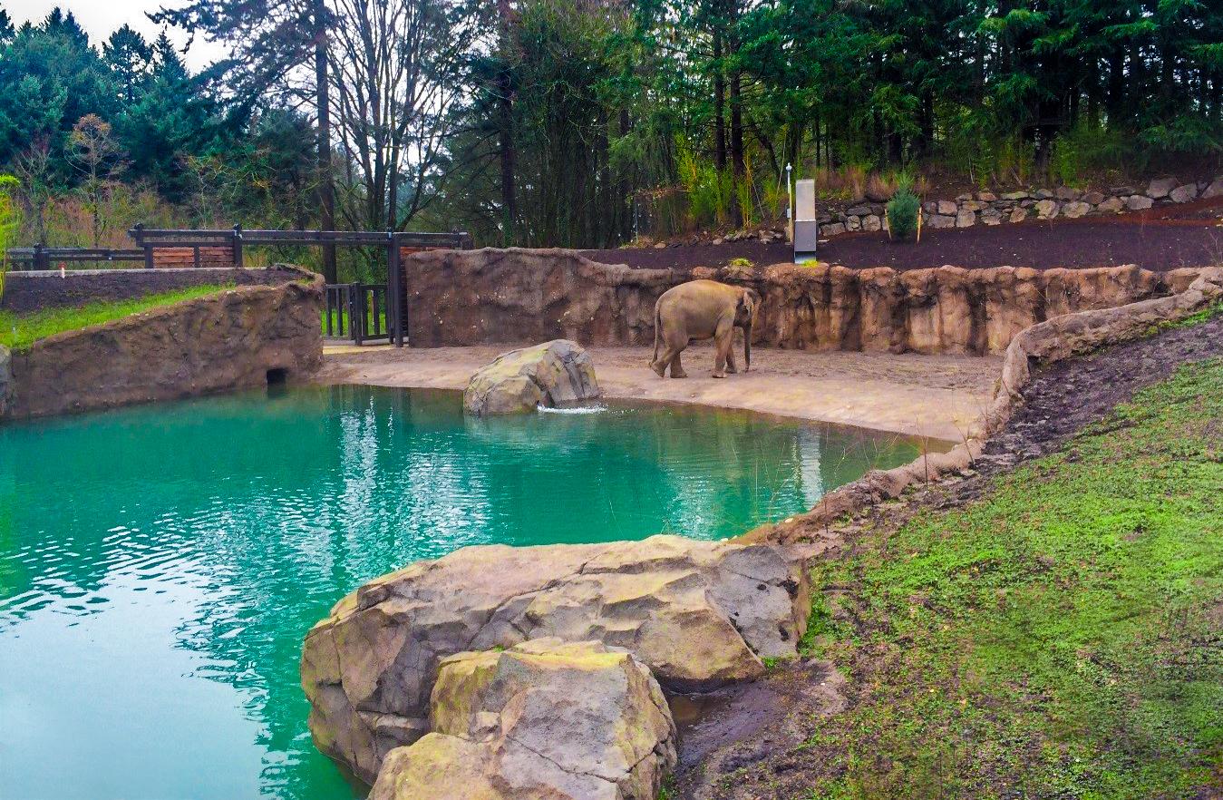 Image: Elephant Lands