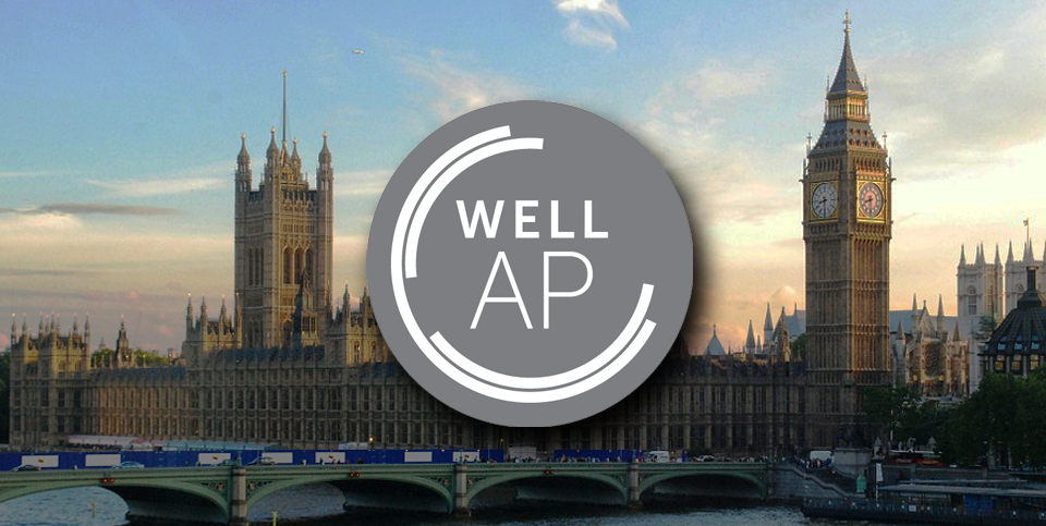 Image: WELL AP Exam Preparation 2-Day workshop - London
