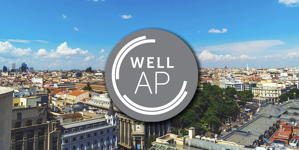 Image: WELL AP Exam Preparation 2-Day workshop - Madrid