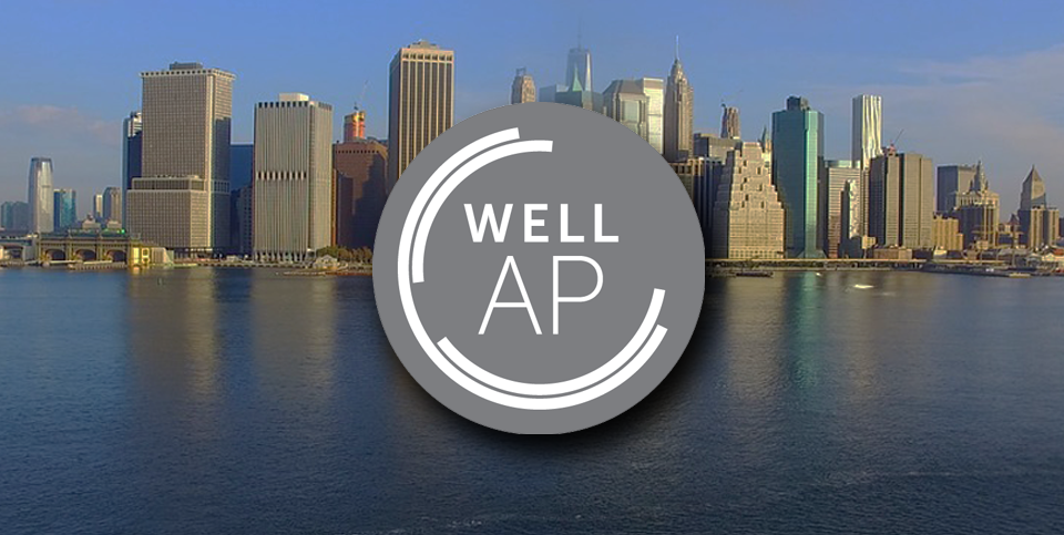 Image: WELL AP Exam Preparation 2-Day workshop - New York