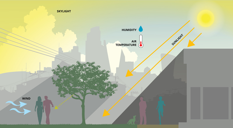 Diagram showing the impact of sunlight, humidity, temperature, and wind on microclimate and pedestrian thermal comfort in urban outdoor public spaces