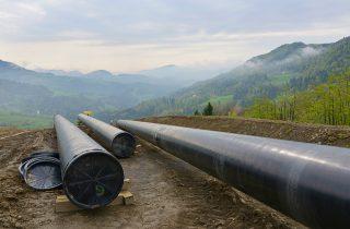 Image: Large Environmental Assessment