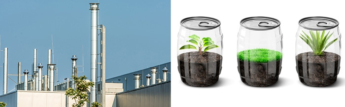 chimneys and plants in containers